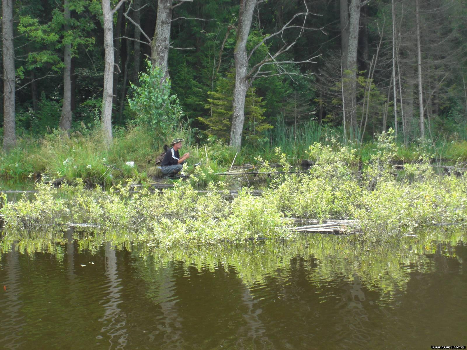 рыбалка на озере в бечино